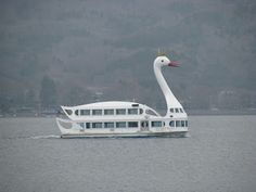 swan boat - f*ck you and the swan you rode in on!!!!!  @Candace Koecke @Mary Hallman @Kimberly Vorheis