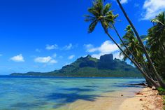 Exploring Bora Bora on a bicycle will bring you to places like this!