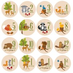 Add a touch of whimsy to your baby's milestone pictures. Perfect for photo props and scrapbooking. Can be repositioned without losing its stick. Charming woodland scenes for every month of baby's firs