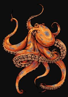 55 Eye Catching octopus Tattoos ideas for Men And Women - best octopus tattoos ideas designs - Animal Art, Sketches, Drawings, Octopus Tattoo, Art, Octopus Tattoos, Octopus Drawing, Octopus Tattoo Design, Ocean Art