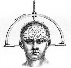 Craniometer and Topographical Map of the Mind   Phrenology [Craniology]