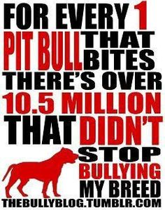Pitbulls are wonderful dogs people are just ignorant about them, you can take any dog out there and make them a fighter, stop being ignorant open up your minds and hearts and adopt a Pitty they make great family dogs.