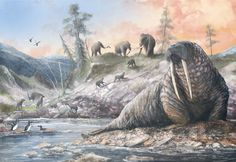 """For new of Doggerland (a landmass in what's now the North Sea) with some of its characteristic Pleistocene fauna: a (modern) walrus, mammoths, spotted hyenas, cave lions, swans and great auks. Painted for 'Ancient Seas' exhibition. Prehistoric Wildlife, Prehistoric World, Prehistoric Creatures, All About Animals, Animals And Pets, Gi Joe, Great Auk, Extinct Animals, Fauna"