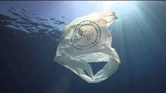 Nuovi abiti da vecchi rifiuti: adidas utilizzerà i rifiuti plastici provenienti dagli oceani grazie a una collaborazione con Parley for the Oceans #rifiuti #riciclo #differenziata