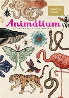 Animalium -  kolektiv | Kosmas.cz - internetové knihkupectví