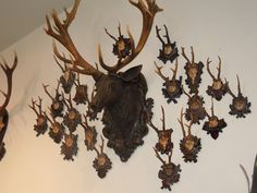 Antique Antlers at Gorsuch in Vail.
