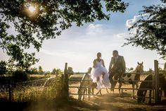 Mariage nature et chevaux Reportage Photo, Photos, Nature, Photography, Pictures, Naturaleza, Nature Illustration, Off Grid, Natural