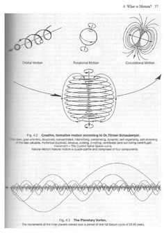 fig 4.2 creative formative motion according to dr tilman schauberger.jpg (575×842)