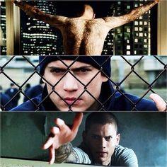 prison break!!!!
