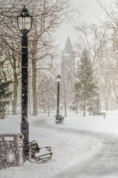 Victoria Park In Snow Canada
