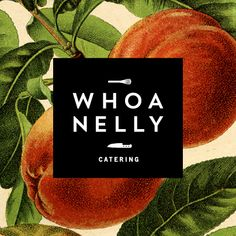 Whoa Nelly Catering - I think this is most similar in terms of layout maybe