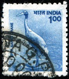INDIA - CIRCA 1975: A stamp printed in India, shows Crane, circa 1975.  Copyright: IgorGolovniov