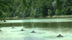 Free HD Background 4U [NO Copyright] :: Fountain Meditation Nature Relax...