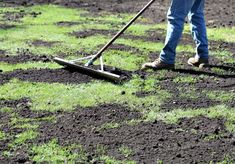 Top dressing and overseeding is the absolute best way to renovate your lawn. If your lawn is showing signs of weakness, consider these steps to have your best lawn ever. Lawn Care Schedule, Lawn Care Tips, Lawn Soil, Weeds In Lawn, Landscape Rake, Lawn And Landscape, Reseeding Lawn, Lawn Repair, Growing Grass