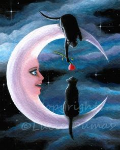 The moon & black cat