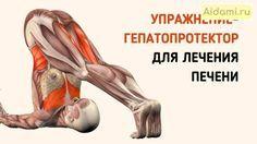 Это упражнение обладает прекрасным терапевтическим воздействием на печень!