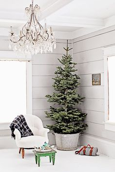 a zinc washbasin is a way to add a shabby and rustic feel to your tree