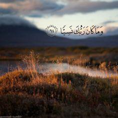 jannnnah:  سهم في قلب الظالم , و بلسم في قلب المظلوم ♥