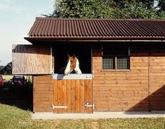 horse shelter ideas | Horse Stable