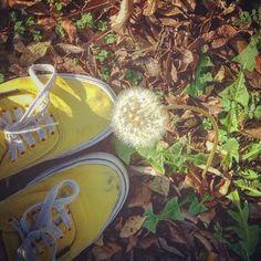 O verão é um estado de espírito! Ago/15 #snapsave #Vans #
