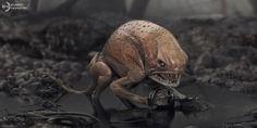Swamp Creature: tadpole hunter - Concept Design, Andrea Chiampo on ArtStation…