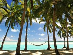 luxury Mauritius holiday at an exceptional beach resort Barbados, Jamaica, Mauritius Hotels, Beach Resorts, Varadero, Montego Bay, Riviera Maya, Best Places To Work, Small Town America