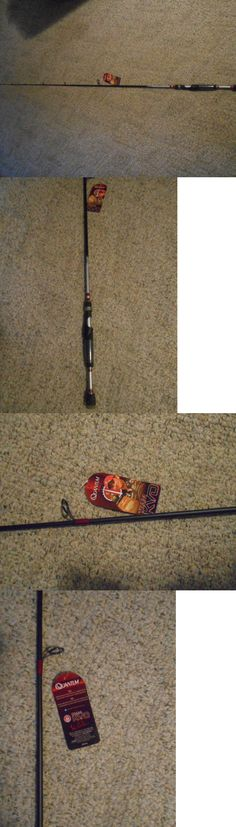 Other Fishing Rods 166161: Jim Grandt Xlh70 Custom Casting