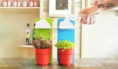 گلدان با آبپاش ابری با % تخفیف و پرداخت  تومان به جای  تومان