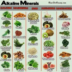 Nutrition means keeping an eye on what you drink and eat. Good nutrition is part of living healthily. If you utilize the right nutrition, your body and life can be improved. Alkaline Diet Plan, Alkaline Diet Recipes, Alkaline Foods Dr Sebi, Alkaline Fruits, Garlic Kale, Kale And Spinach, Raw Broccoli, Matcha Benefits, Health And Fitness
