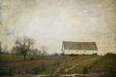 Before the Snow by raewillow, via Flickr