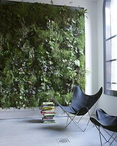 indoor vertical garden - no room inside my house, but a great idea for a courtyard.