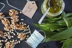 wild garlic pesto Wild Garlic Pesto, Green Carpet, Edible Plants, Alps, Veggies, Healthy, Chef Recipes, Cooking, Green Mat