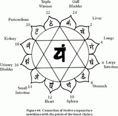 """The ten alphabets on the petals correspond to the vibratory frequency of the nadis coming in from the physical body. The main frequency of the anahata chakra is """"Yam"""". Uttering these mantras in a certain format while meditating on the navel and in a certa 7 Chakras Meditation, Kundalini Yoga, Pranayama, Qigong, Heart Chakra Tattoo, Reiki, Anahata Chakra, Second Chakra, Chakra Symbols"""