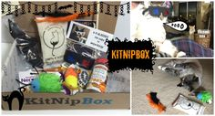 Kitnipbox cat subscription box unboxing & review October 2015