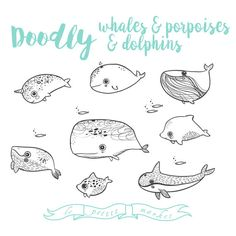 Hand Drawn Whale Porpoise Dolphin Clipart Vector by LePetiteMarket Right now, June 2016, spend $15 and get a special 50% Off coupon for your next purchase! xoxo