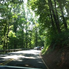 Road to Monticello...going to visit Jefferson's house. Love these lush and green Virginia roads!