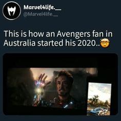 the avengers memes Avengers Humor, Marvel Avengers, Marvel Jokes, Funny Marvel Memes, Marvel Heroes, Captain Marvel, Avengers Poster, Avengers Characters, Avengers Quotes