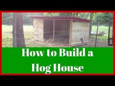 American Guinea Hogs (AGH): How to build a hog house (or how I did, anyway!) - YouTube
