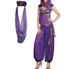 nice H88 Jasmine Genie Belly Women Dancer Arabian Nights Fancy Dress Costume