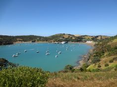 Matiatia Bay where the tourists arrive by foot ferry. Beautiful Scenery, Beautiful Beaches, Waiheke Island, River, World, Places, Outdoor, Outdoors, The World