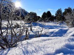 Lenzerheide GR  Im Vordergrund auf einer Schneefläche wunderschöne Schneekristalle in denen sich das Sonnenlicht spiegelt.