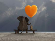 Elephant and Dog Canvas Art Framed Canvas Prints, Canvas Frame, Canvas Wall Art, Wall Art Prints, Elephants Never Forget, Heart Balloons, Creative Activities, Paint By Number, Pictures To Paint