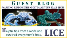 What to do when your child gets lice - Not a fun topic but REALLY helpful advice on what to do and how to prevent it!