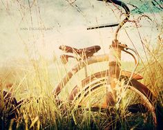rusty tricycle