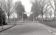 Birdaarderstraatweg