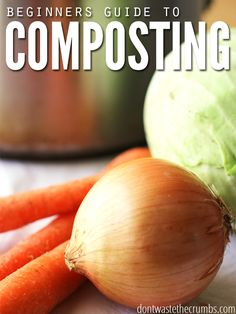 One of the best things you can do for your garden is to compost! Love this quick-start guide for beginners because it includes a glimpse into composting in a daily life. Learn what to compost, what not to compost, tips for collecting waste & dealing with potential problems. Composting might be the best gardenning tip yet! :: DontWastetheCrumbs.com