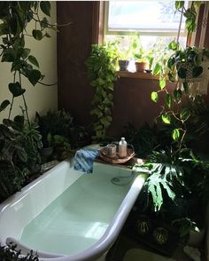 This looks so relaxing ✨ Pic via @livebybeing