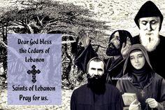 Dear God, Vows, Pray, Saints, Religion, Blessed, Movie Posters, Movies, Santos