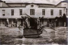 Photographe Aléatoire... Le regard ne s'empare pas des images, ce sont elles qui s'emparent du regard. Elles inondent la conscience.  Franz Kafka Artiste, écrivain (1883 - 1924)