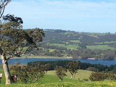 Myponga SA Adelaide South Australia, Countryside, Southern, Backyard, River, Outdoor, Beautiful, Outdoors, Yard